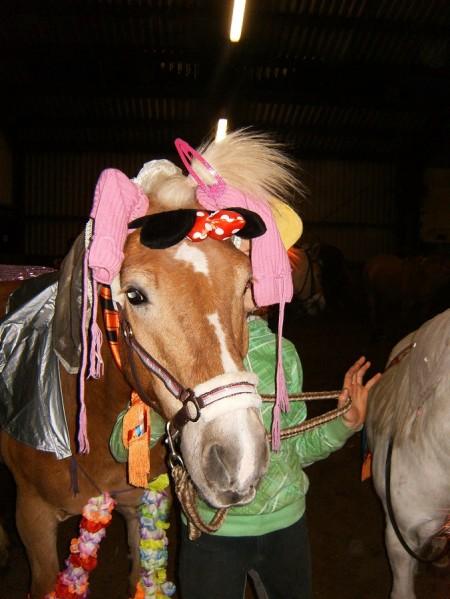ponykampen